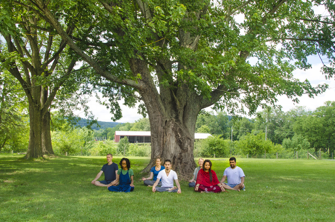 Philly yoga and meditation center links city dwellers back to nature